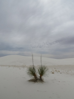 12. White Sands National Monument
