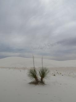 12. White Sands National Monument